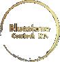 Bluestone Comtech Limited Logo